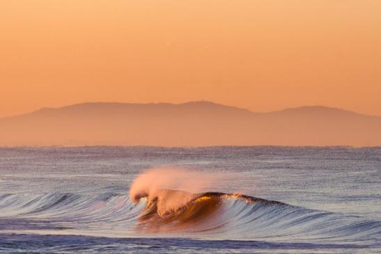 versilia wave david